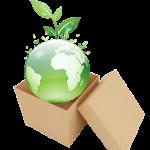 Sản xuất xanh – Xu hướng phát triển ngành sản xuất hộp giấy thế giới