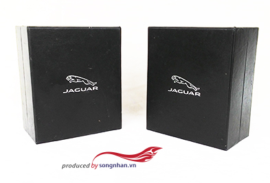 HOP CAO CAP - JAGUAR (2) copy